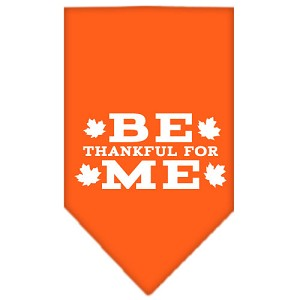 Be Thankful for Me Screen Print Bandana Orange Small